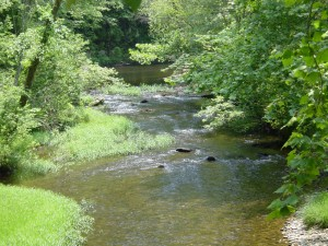 Conasauga River, headwaters